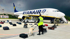 Евросоюз готовит санкции против Минска из-за посадки самолета Ryanair