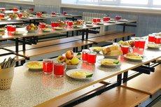 В Госдуме предложили возложить ответственность за питание на местные администрации