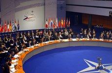 Россия призвала НАТО определиться с выбором