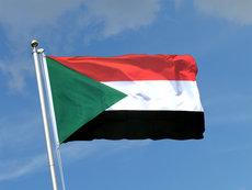 Депутат Шерин: США вынудили Судан пересмотреть военное соглашение с Россией