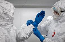 В России за сутки коронавирус диагностирован у 8275 человек
