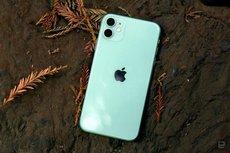Назван самый популярный смартфон в России