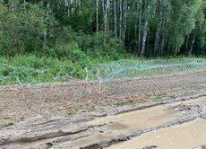 В Польше поймали группу лиц, ломавших заграждения на границе
