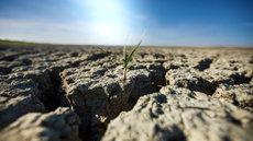 Синоптик предсказал сильнейшую засуху в России
