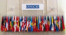 Делегация России отказалась от участия в заседании ОБСЕ