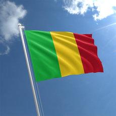 Мали нуждается в иностранной помощи после закрытия военных баз Франции