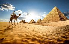 Россиянам не удастся бюджетно отдохнуть в Египте
