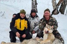 Российский депутат ушел в отставку после убийства волка
