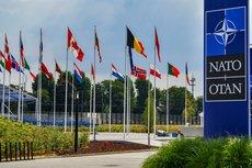 Путь Украины в НАТО: вопрос решён, но сдвигов нет
