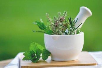 Растения, которые сберегают здоровье человека