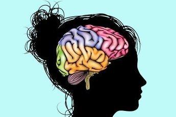 Несколько способов улучшить мозговую деятельность с помощью питания