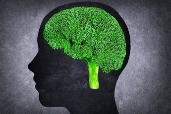 Продукты, которые вредят человеческому мозгу